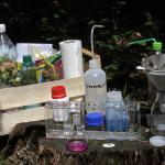 Chemie im Wald